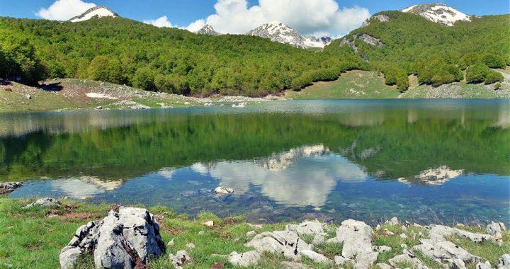 lago vivo barrea